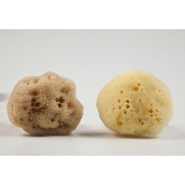 Fine Silk Natural Sea Sponge from Kalymnos Island-Greece